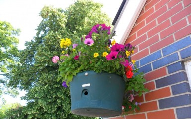 Alsager Station in bloom